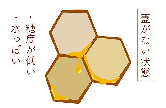 蜜葢がない状態のハチミツのイラスト